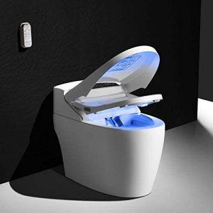 WC japonais monobloc Luxe
